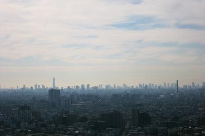 ハーモネスタワー松原から東京スカイツリーなど