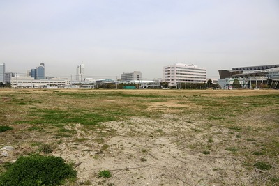 (仮称)幕張新都心若葉住宅地区計画(B-7街区)