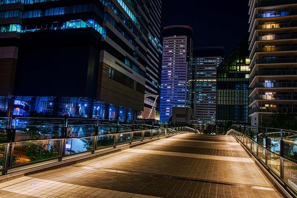 夜の豊洲パークブリッジ