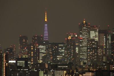 東京タワー ダイヤモンドヴェール・ホワイトダイヤモンド