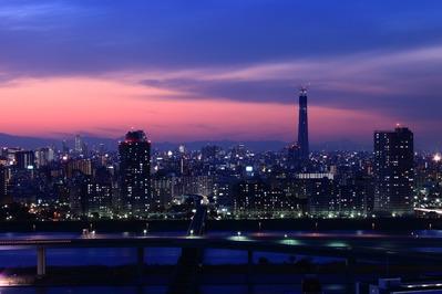 東京スカイツリーのある景色