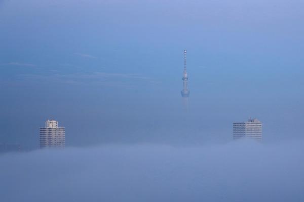 雲海と東京スカイツリー