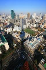 東京タワーの影