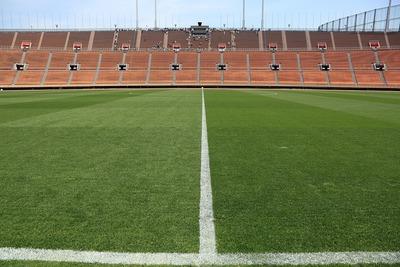 国立競技場の芝生
