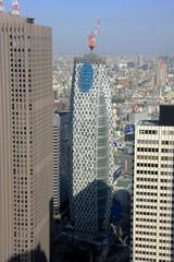 東京都庁から見たコクーンタワー