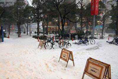 大雪のトキビル前