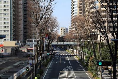 パークシティ武蔵小杉 ザ ガーデン タワーズ
