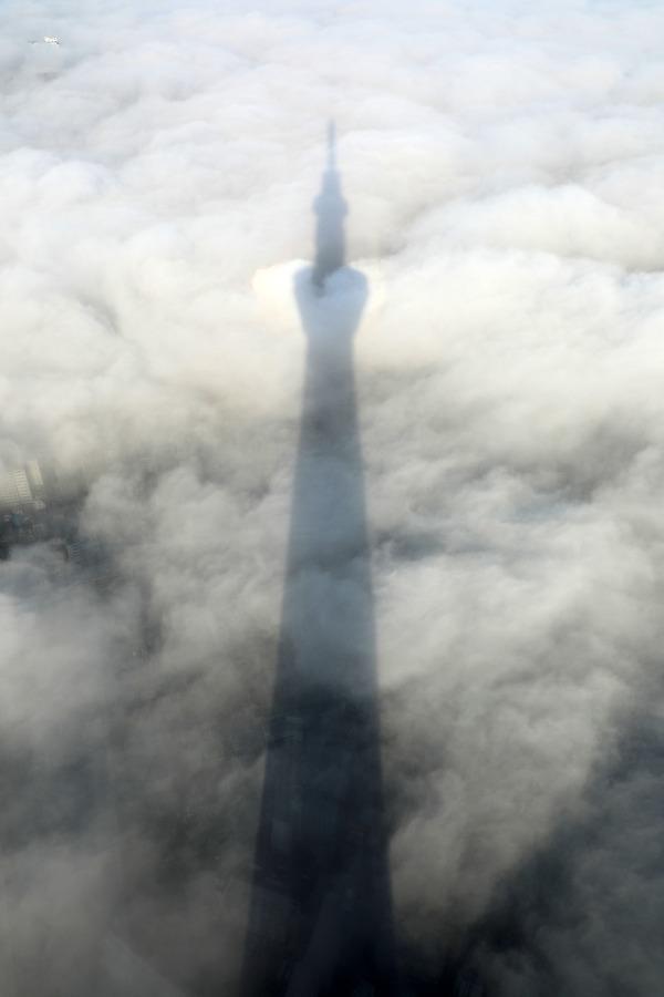 雲海と東京スカイツリーの影
