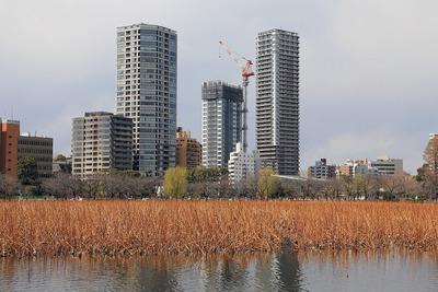 上野のタワーマンション群