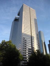 Descartes Tower