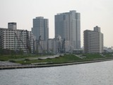 東京新大陸