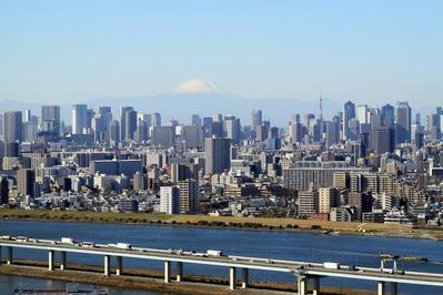 タワーホール船堀から富士山