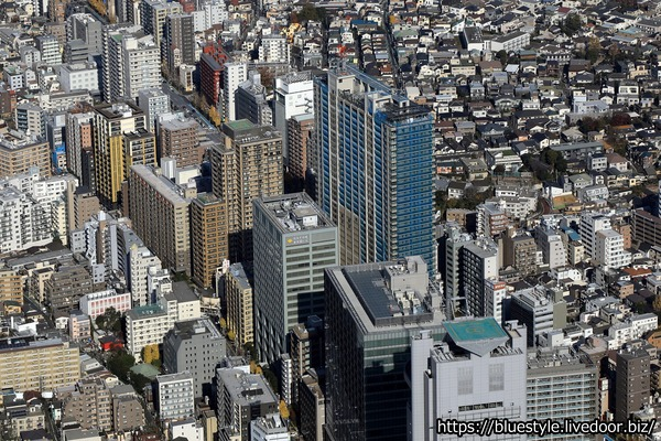 パークコート文京小石川 ザ タワーの空撮