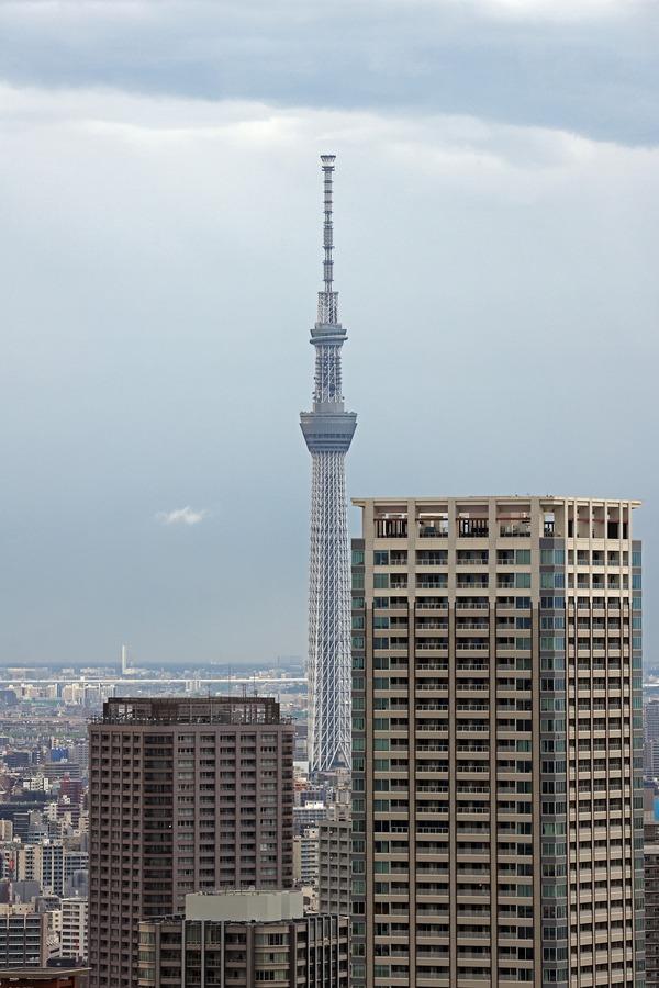 ドゥ・トゥールの高層階から見た東京スカイツリー