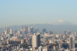 新宿と富士山