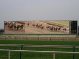 レース根岸3
