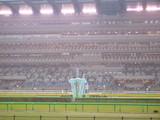 雨東京競馬場ごーる
