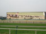 レース根岸1