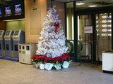 横浜ウィンズクリスマスツリー