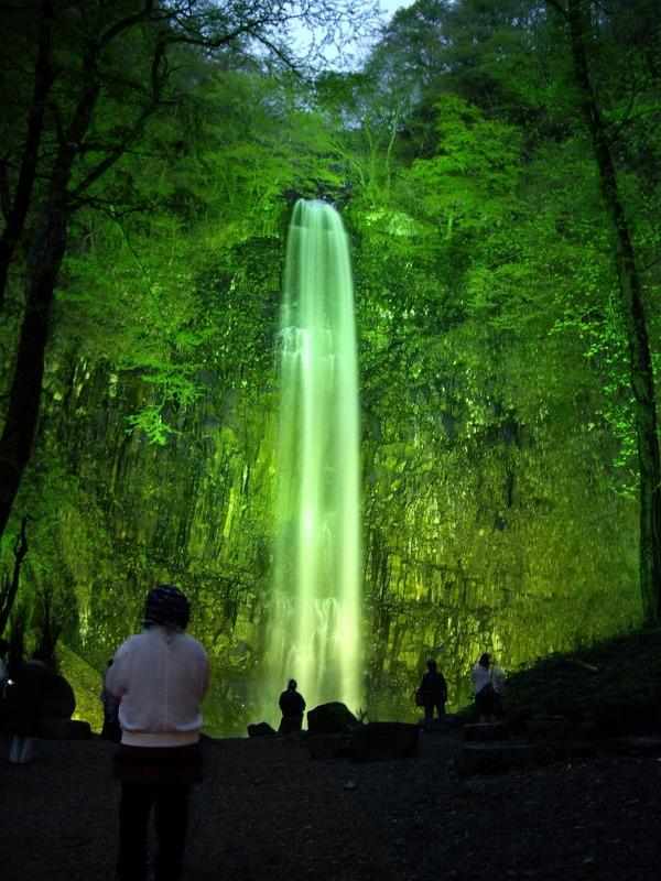 玉簾の滝ライトアップ2