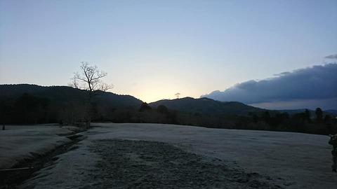 朝散歩飛火野