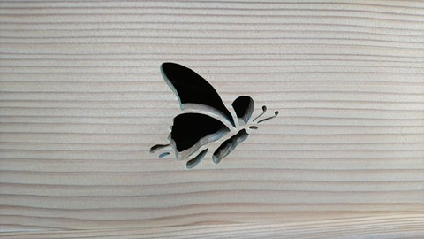 京都迎賓館蝶