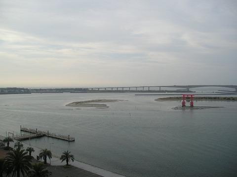 浜名湖の潮の流れと西伊豆で出会ったマキコボシの大ダイに驚いた・・・静岡編
