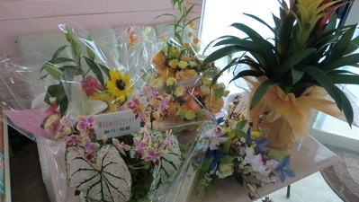 開店祝いの花たち