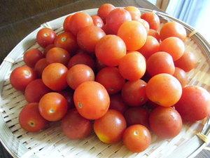 プチトマト200円盛