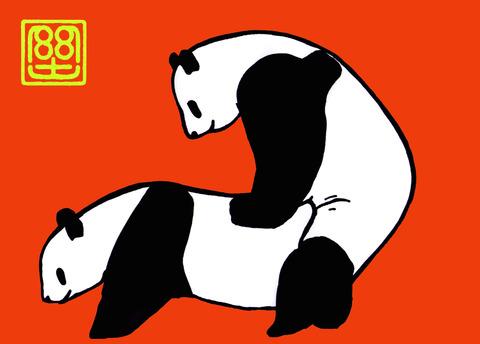 パンダの交尾(カラー)
