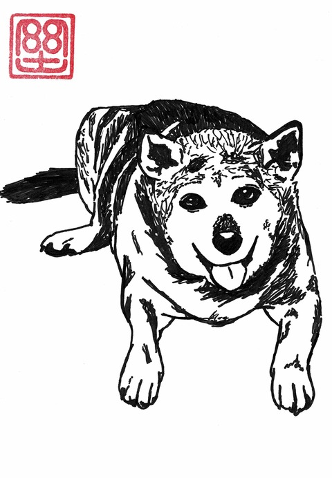 菊本さん犬