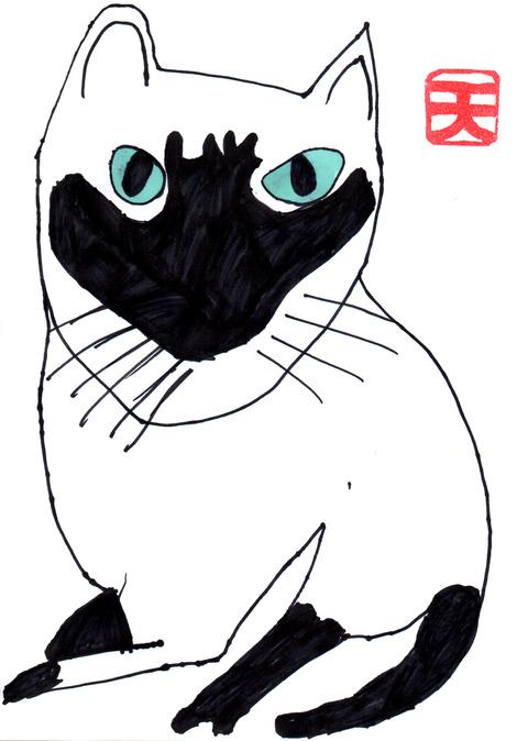シャム猫(テンちゃん)