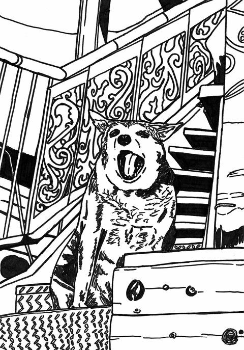 菊本さん犬2