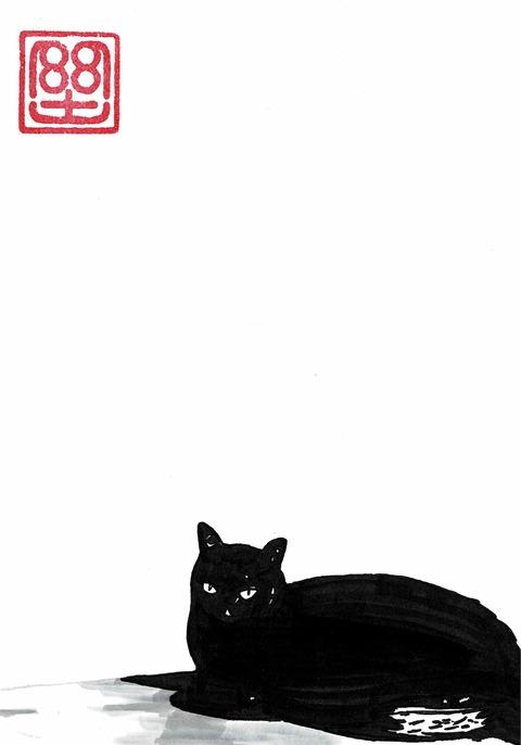 ピコさんちの黒猫