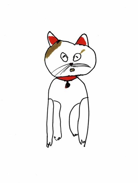 ネコ(今)