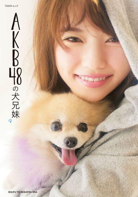 AKB48と犬兄弟