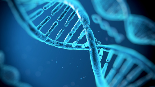 3028124-poster-p-dna