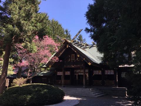 写真 2017-05-09 12 03 10