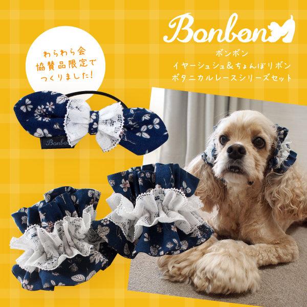 201811わらわら会_Bonbon協賛_ボタニカル