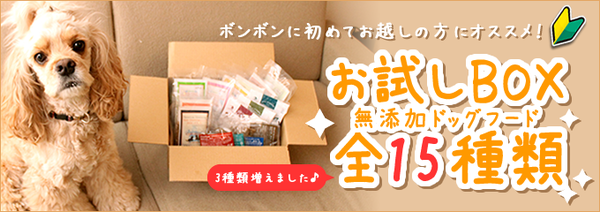 bn_for_top_box