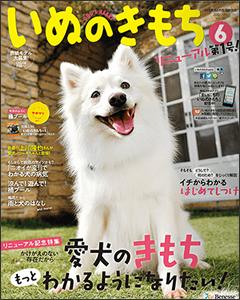 media_daimon_2