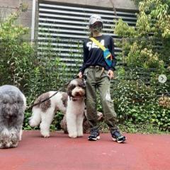 工藤静香、愛犬散布中の私服姿が大不評「昭和のヤンキーみたい」