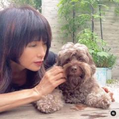 工藤静香、愛犬と戯れる動画にツッコミの声「自分が写りたいんだね」