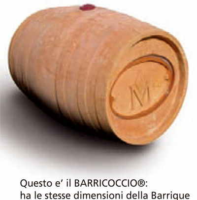 baricoccio
