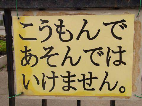 https://livedoor.blogimg.jp/bonnchann/imgs/f/3/f307b67f.jpg