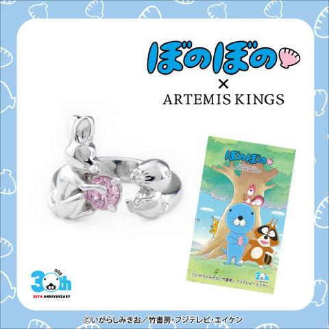ring_500