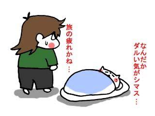 別の上海土産 (2)