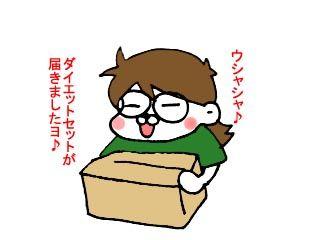 手荷物チェック (1)