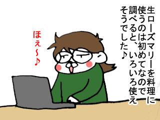 ローズマリー (1)