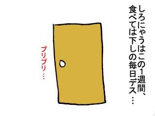 オナカゴロゴロ (3)